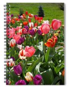 Tulips Garden Art Prints Colorful Spring Floral Spiral Notebook