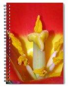 Tulips - Hearts Desire Spiral Notebook
