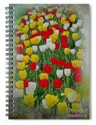 Tulips In A Field Spiral Notebook