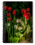 Tulips In Bloom Spiral Notebook