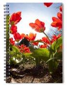 Tulips In Spring Spiral Notebook