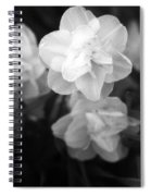 Tulips - Infrared 02 Spiral Notebook