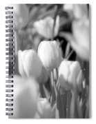 Tulips - Infrared 10 Spiral Notebook
