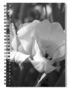 Tulips - Infrared 19 Spiral Notebook
