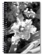 Tulips - Infrared 25 Spiral Notebook