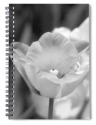 Tulips - Infrared 39 Spiral Notebook