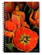 Tulips Of Fire Spiral Notebook