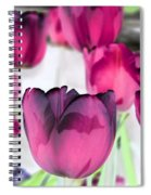 Tulips - Perfect Love - Photopower 2027 Spiral Notebook