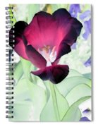 Tulips - Perfect Love - Photopower 2043 Spiral Notebook