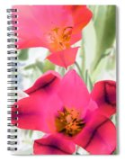 Tulips - Perfect Love - Photopower 2045 Spiral Notebook