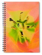Tulips - Perfect Love - Photopower 2052  Spiral Notebook