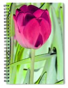Tulips - Perfect Love - Photopower 2053 Spiral Notebook