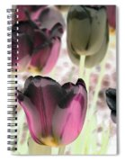 Tulips - Perfect Love - Photopower 2066 Spiral Notebook