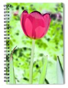 Tulips - Perfect Love - Photopower 2070 Spiral Notebook