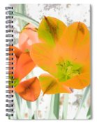 Tulips - Perfect Love - Photopower 2084 Spiral Notebook