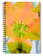 Tulips - Perfect Love - Photopower 2085 Spiral Notebook