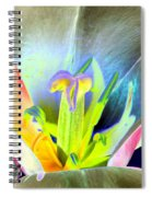 Tulips - Perfect Love - Photopower 2161 Spiral Notebook
