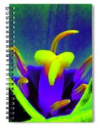 Tulips - Perfect Love - Photopower 2167 Spiral Notebook