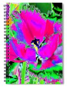 Tulips - Perfect Love - Photopower 2183 Spiral Notebook