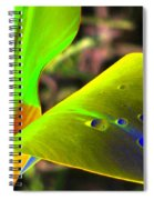 Tulips - Perfect Love - Photopower 2196 Spiral Notebook
