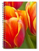 Tulips Red And Yellow Spiral Notebook