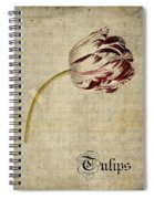 Tulips - S01bt2t Spiral Notebook