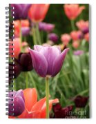 Tulips Welcome Spring Spiral Notebook