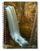 Tumalo And The Tree Spiral Notebook