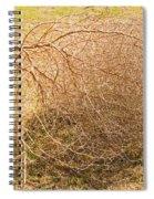 Tumbleweed Spiral Notebook