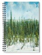 Tundra Forest Spiral Notebook