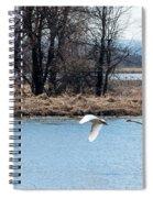 Tundra Swan Flight Spiral Notebook
