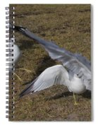 Tuned Spiral Notebook