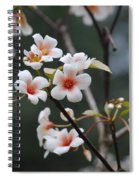 Tung Oil Blossoms Spiral Notebook