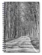 Tunnel Of Trees Black And White Spiral Notebook