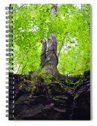 Tunnel Tree Spiral Notebook