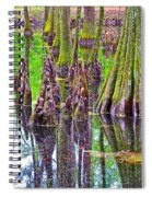 Tupelo/cypress Swamp Reflection At Mile 122 Of Natchez Trace Parkway-mississippi Spiral Notebook