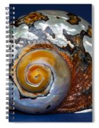 Turbo Smarticus Spiral Notebook