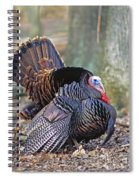 Turkey Gobbler Strut Spiral Notebook