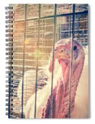 Turkey In The Cage Spiral Notebook