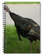 Turkey Trot Spiral Notebook