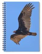 Turkey Vulture Soaring Overhead Drb153 Spiral Notebook