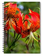 Turkish Cap Lily  Spiral Notebook
