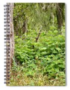 Turk's Cap And Tree Spiral Notebook
