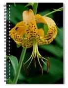 Turk's Cap Lilly Spiral Notebook