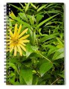 Turning Yellow Spiral Notebook