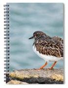 Turnstone Spiral Notebook
