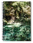 Turquoise Forest Pond On A Summer Day No1 Spiral Notebook