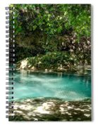 Turquoise Forest Pond On A Summer Day No3 Spiral Notebook