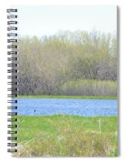 Turquoise Marsh Spiral Notebook