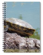 Turtle At The Lake Spiral Notebook